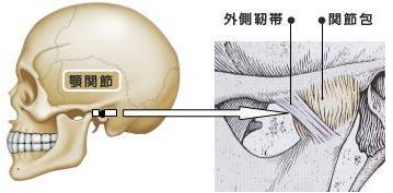 関節包や靭帯