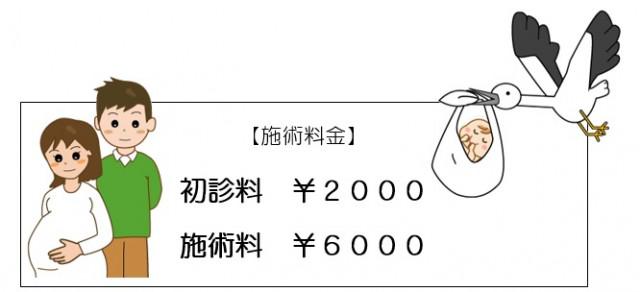 妊活サポート料金